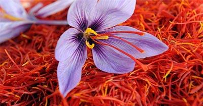 saffron-chemistry