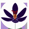 saffron-icon2